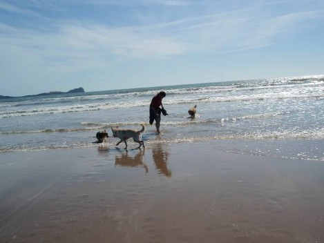 Brecon Beacons Hotels - Rhossill Bay Walk