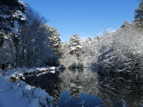 Winter snow scene, the large lake at Craig y Nos Country Park in the Brecon Beacons National Park